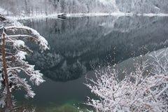 Lago Alpsee nell'orario invernale con la riflessione della montagna ed il pilastro di legno germany Fotografie Stock