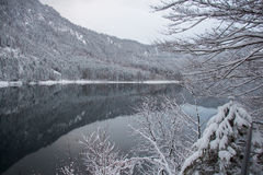 Lago Alpsee nell'orario invernale con la riflessione della montagna germany Immagini Stock