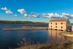 Lago Alqueva Immagine Stock Libera da Diritti