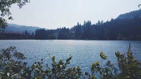 Lago alta, marmota, Canadá fotografía de archivo