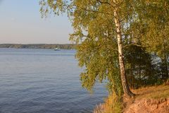Lago amarelado contra um lago com um iate imagem de stock