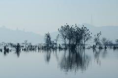 Lago ana Sagar em Ajmer Imagens de Stock Royalty Free