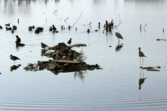 Lago ana Sagar en Ajmer Imagen de archivo