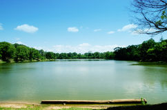 Lago in Angkor Fotografia Stock