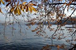 Lago annecy e fogliame di autunno Fotografie Stock