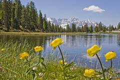 Lago Antorno nelle dolomia Fotografia Stock Libera da Diritti