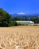 Lago Aps train del trigo Imagenes de archivo