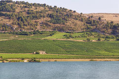 Lago Arancio Стоковое Изображение