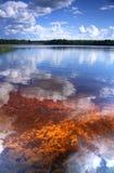 Lago arancio Fotografie Stock Libere da Diritti