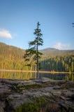 Lago Arbersee Fotografía de archivo