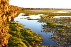 Lago Arbuckle la Florida Fotografía de archivo