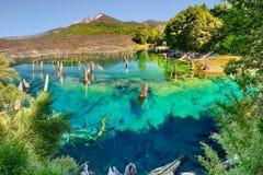 Lago Arcoiris σε Conguillio Ν Π - Χιλή Στοκ Εικόνες
