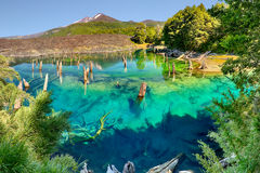 Lago Arcoiris at Conguillio N.P. - Chile. Lago Arcoiris at Conguillio N.P. Chile - HDR panorama Stock Photo