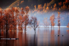 Lago ardiente Imágenes de archivo libres de regalías