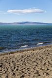 The lago argentino from the beach. The lago argentino from the beach at argentinian patagonia Royalty Free Stock Photography