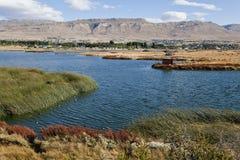 Lago argentino med El Calafate baktill. Arkivfoto