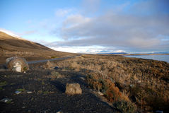 Lago Argentino and road in Patagonia Stock Images