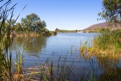 Lago Arizona patagonia Foto de archivo libre de regalías