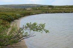 Lago artico Fotografia Stock