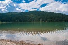 Lago artificial limpo de cristal perto da floresta do pinho em Romênia Imagens de Stock Royalty Free