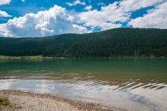 Lago artificial limpo de cristal perto da floresta do pinho em Romênia Fotografia de Stock Royalty Free