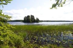 Lago Asnen na Suécia Imagem de Stock