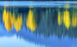 Lago astratto Autumn Snoqualme Pass gold degli alberi di giallo dell'acqua blu Fotografia Stock Libera da Diritti