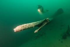 Lago austríaco Imagem de Stock Royalty Free