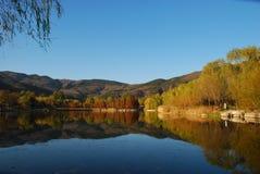 Lago in autum Fotografia Stock