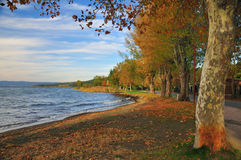 Lago autumn Fotografia de Stock Royalty Free