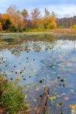 Lago autumn fotos de stock