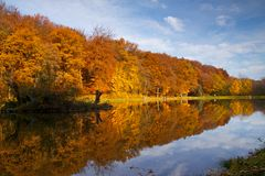Lago autumn Foto de Stock Royalty Free