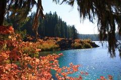 Lago autumn Fotografie Stock