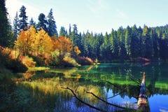 Lago autumn Immagini Stock
