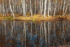 Lago autumn Imagen de archivo libre de regalías