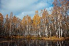 Lago autumn Fotos de archivo