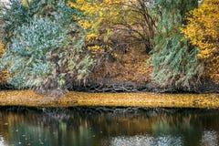 Lago autumn Foto de Stock
