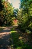 Lago autumn Imagen de archivo