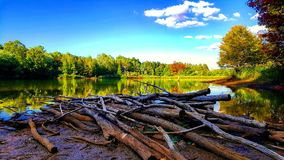 Lago autumn Imagem de Stock Royalty Free