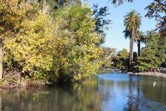 Lago autumn Imagem de Stock