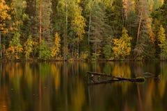 Lago autumn en Finlandia Imagen de archivo libre de regalías