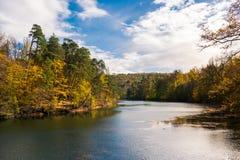 Lago Autumn Forest Landscape European Destina Suttgart Baerensee Imagenes de archivo