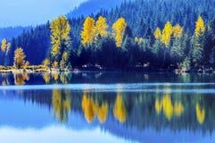 Lago Autumn Snoqualme Pass Washing gold de los árboles de Yewllow del agua azul Imagen de archivo
