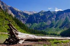 Lago avalanche no parque nacional de geleira fotos de stock royalty free