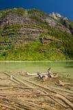 Lago avalanche no parque nacional de geleira, Montana foto de stock