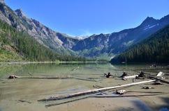 Lago avalanche, parque nacional de geleira, Montana fotografia de stock