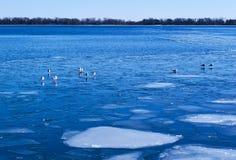 Lago azul coberto com o gelo branco Imagem de Stock Royalty Free