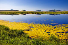 Lago azul, grama verde, montes, céu azul na manhã Fotografia de Stock