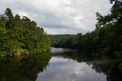 Lago Bärensee che curva lungo il paesaggio attraverso gli alberi con il cielo Fotografia Stock