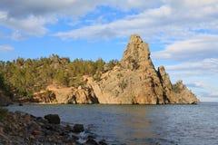 Lago Baikal Árbol en campo Fotos de archivo libres de regalías